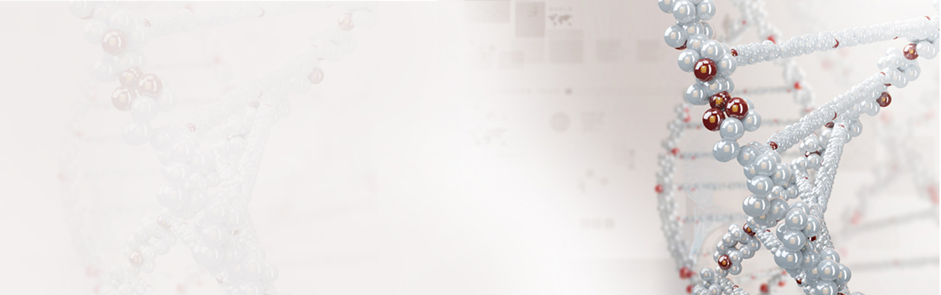 banner2second